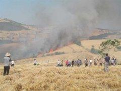 آتش سوزی,خبرلنده,شهرستان لنده,آتش سوزی های سریالی,روستای کتج,مزراع کشاورزی,اخبار لنده