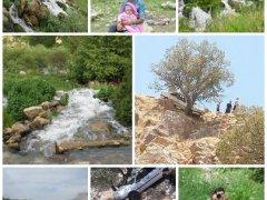بهشت گمشده,خبرلنده,موگرمون,چشمه های موگرمون,گردشگران خوزستانی,مناطق گردشگری,استان چهار فصل,کمبود امکانات,تصادف,یاسوج,بوشهر,بهبهان
