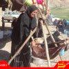 دومين جشنواره غذاهاي بومي و محلي در روستاي شيتاب برگزارشد